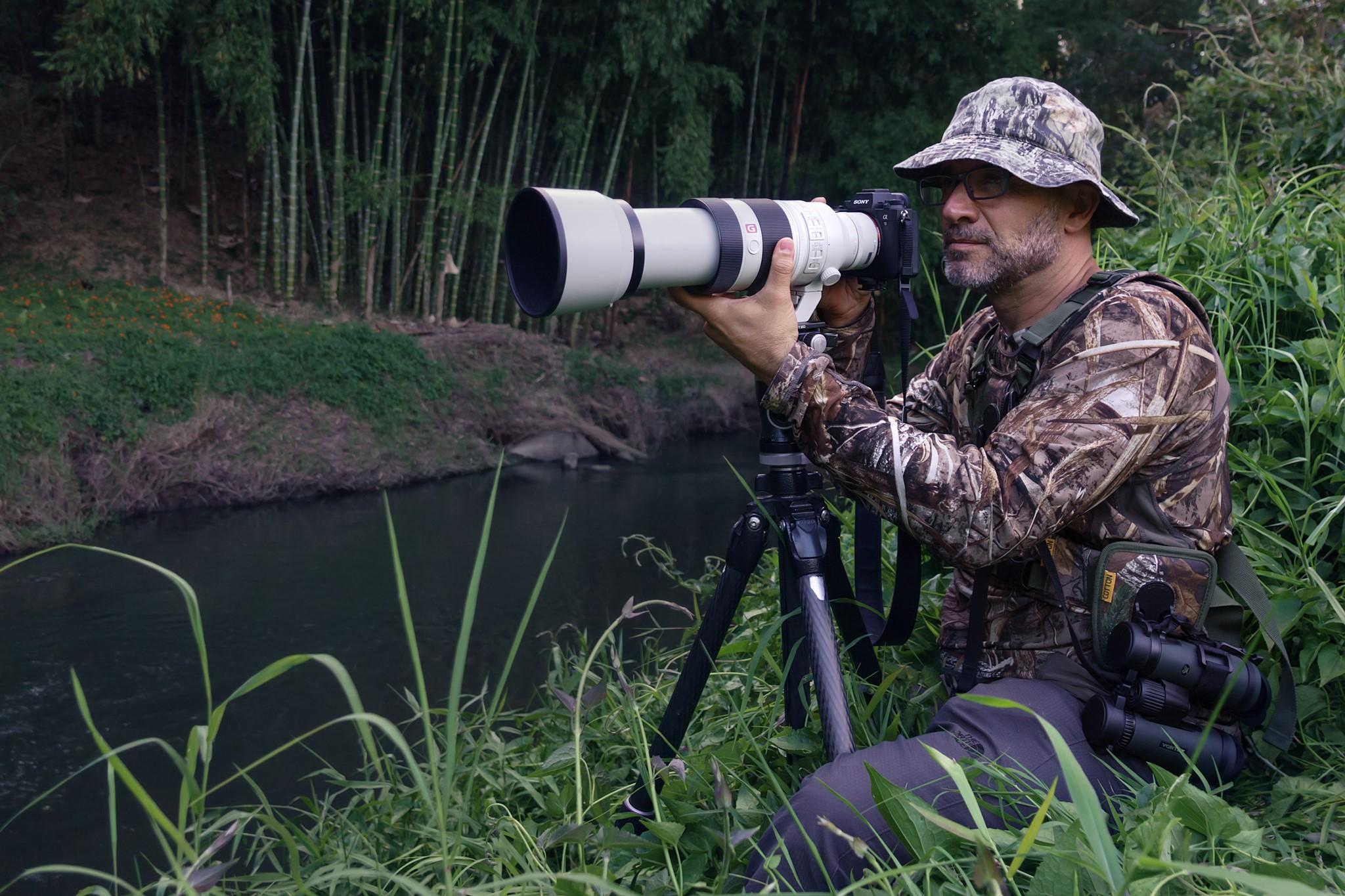 El reto de fotografiar aves a larga distancia por Memo Gómez