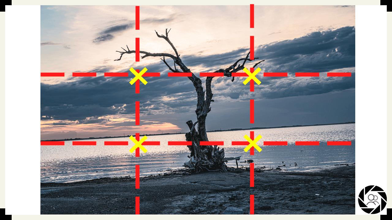 Reglas básicas de composición Fotográficas